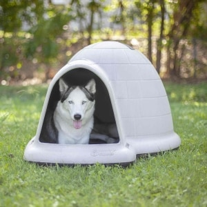 Peachy Petmate Indigo Outdoor Dog House Is Made In The Usa Download Free Architecture Designs Embacsunscenecom