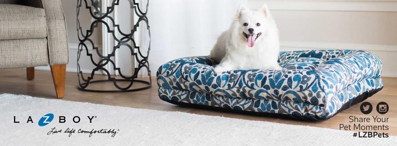 Groovy La Z Boy Pet Comfortable Pet Furniture Petmate Ibusinesslaw Wood Chair Design Ideas Ibusinesslaworg