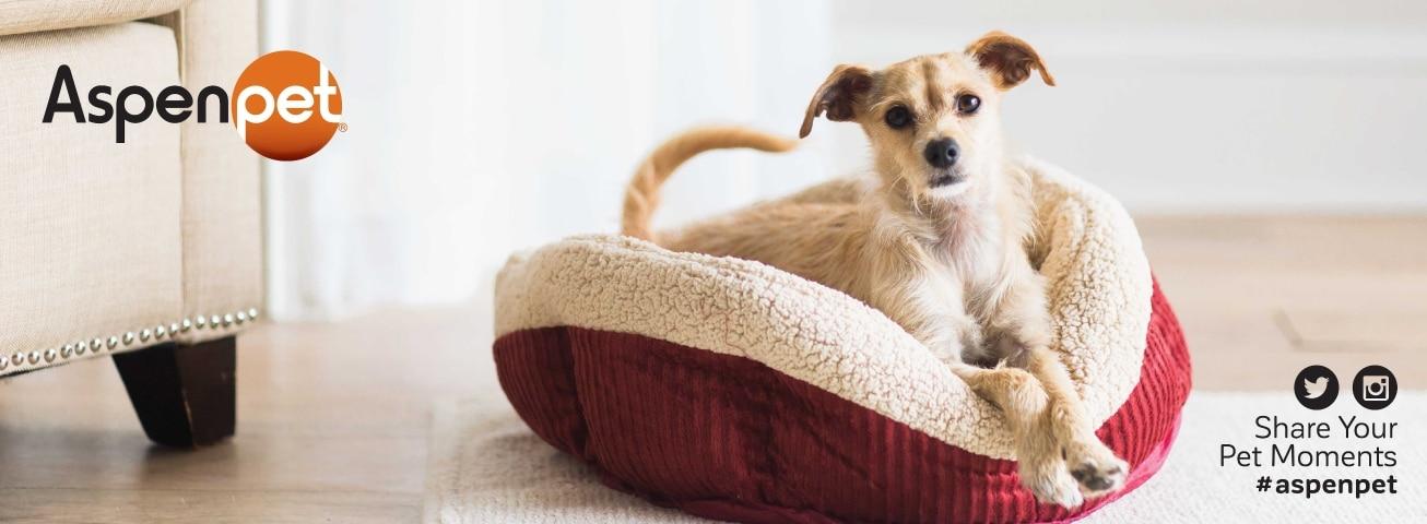 ea51e25cf Aspen Pet products for dogs