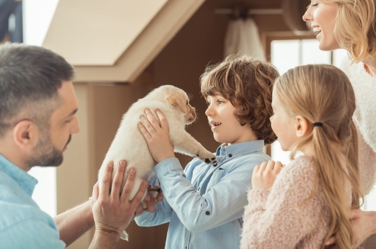 Pets Bring Kids With Autism Out Of >> Pets May Improve Social Skills In Children With Autism